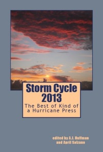 2013 Storm Cycle Cover