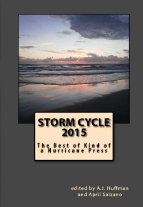 2015 Storm Cycle Cover (1)
